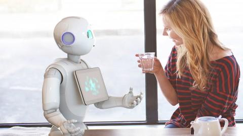 Những công việc đầu tiên sẽ bị thay thế bởi robot