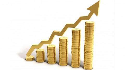 Đặc điểm nhân sự ngành Đầu tư