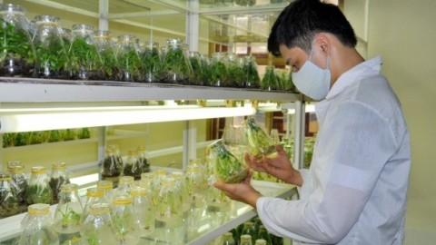 Đặc điểm nhân sự ngành sinh học, hóa học