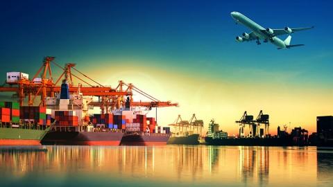 Đặc điểm nhân sự ngành xuất nhập khẩu